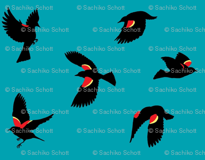 Red-winged Blackbirds - Blue