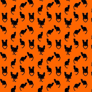 black cats silhouettes on orange