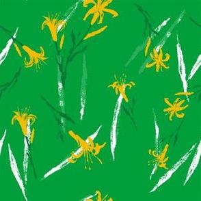 Hemerocallis citrina_g