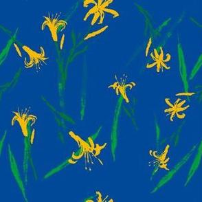 Hemerocallis citrina_b
