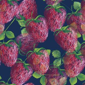 Temps_des_fraises_Fraises-01