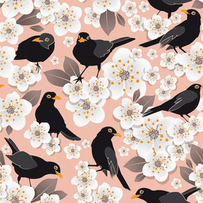 Waiting for the cherries 3 // pink background white flowers blackbirds