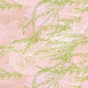 Pink_Seafans_and_Seaweed-150