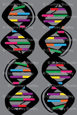 Rrainbowdna_ed_preview