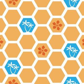 Honeycomb  on Waikiki Beach