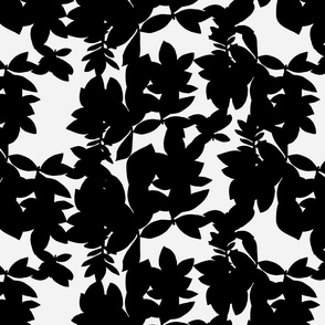 Black and White Graphic Rhododendron Silhouette