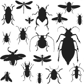 "10"" Bugs Collection - Black & White"