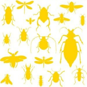 "6"" Bugs Collection - Bright Summer Yellow"