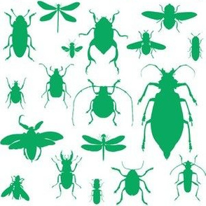 "6"" Bugs Collection - Summer Green"