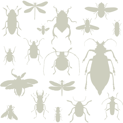 "8"" Bugs Collection - Tan fabric by shopcabin on Spoonflower - custom fabric"