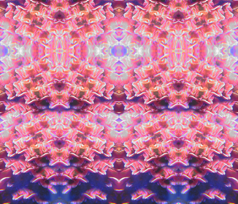 fuschiapinkoyster fabric by eleacanna on Spoonflower - custom fabric