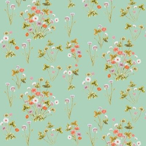 Meadow Wildflower 02D Autumn Peppermint