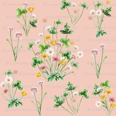 Meadow_04E_Golden_Peach