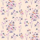 Meadow_04_Apricot