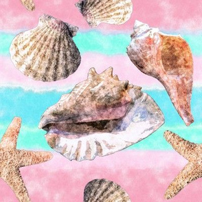 Shells Pink and Blue Watercolor Stripe