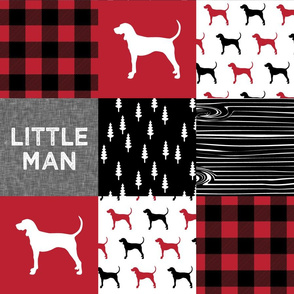 Little Man || black and red coonhound