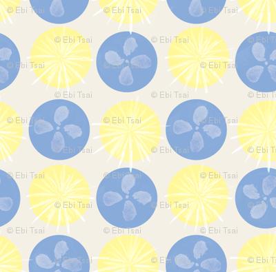 summer rains hydrangea-ed