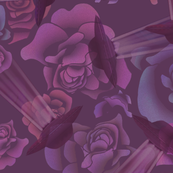 Rose_UFO_Color_Balance