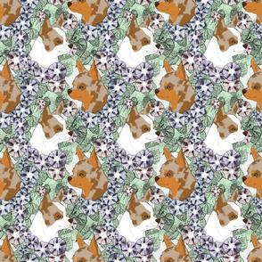Floral Chihuahua portraits E