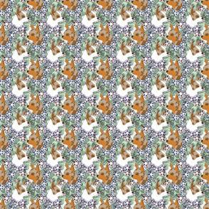 Floral Chihuahua portraits E - small