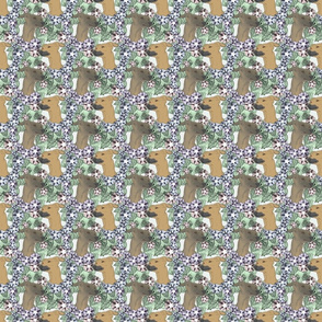 Floral Italian Greyhound portraits B - small