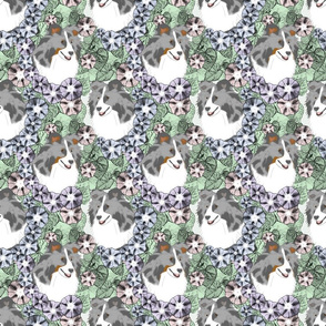 Floral Shetland sheepdog portraits C