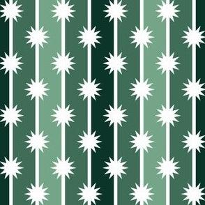 06487798 : star stripe : spiky cactus