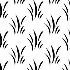 Black Grass on White