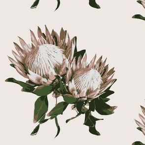 Protea flower wallpaper protea fabric home decor large floral