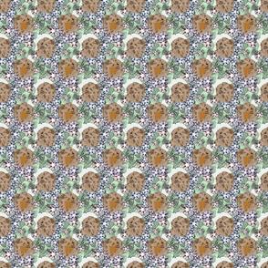 Floral Pomeranian portraits F - small