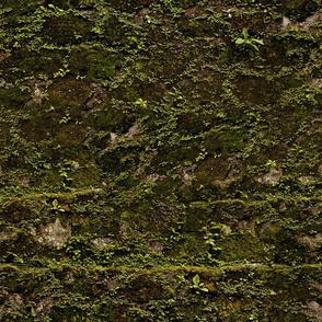 Mossy Stone Camo