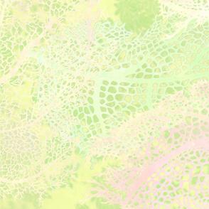 Sea_Green_Murex_bg-brighter