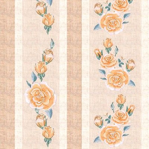 Old Fashioned Rose Stripe Peach color