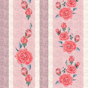 Old Fashioned Rose Stripe Red Roses