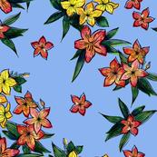 Hawaiian tropical flowers on blue