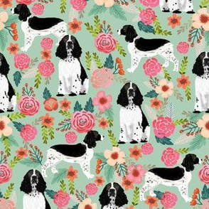 English Springer Spaniel black and white coat florals mint