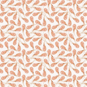 shrimps_pattern