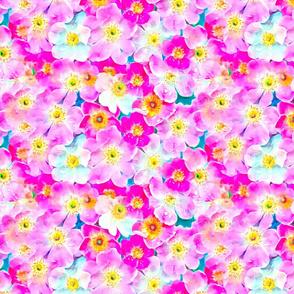 Tumbling Flowers