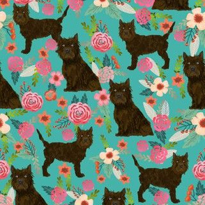 Cairn terrier brown coat floral turquoise
