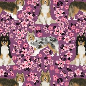 sheltie fabric dogs and cherry blossoms print - amethyst
