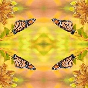 monarch_spring_2