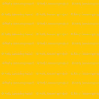 solid circus yellow (FEC000)