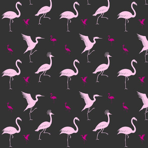 flamingo, crane and heron pink