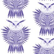 arrow owl blue white