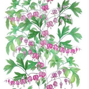bleeding_heart_24_x_24_4__leaves