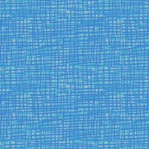 Crosshatch Blue and Grey