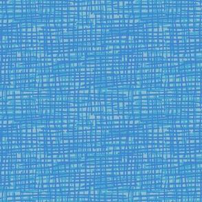 Crosshatch Blue and Grey