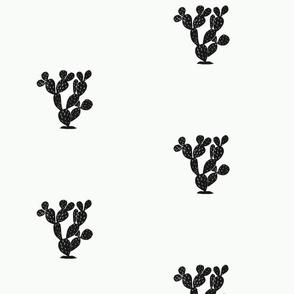 cactusBW