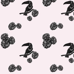 Toucan in Monstera