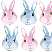 boho baby bunny rabbits